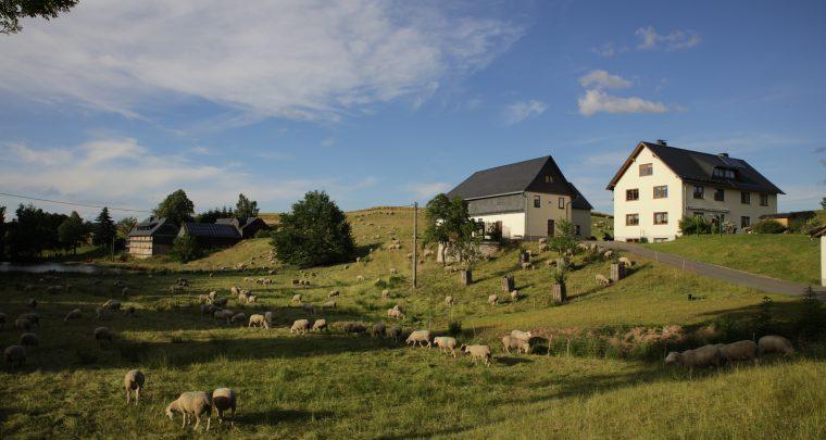 Stangengrün – Das baukulturelle Erbe generationsübergreifend annehmen